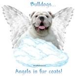 Angels Fur Coats
