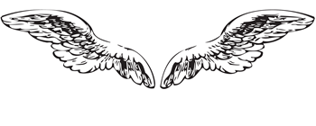 Angel Wings - Small