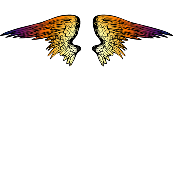 Sunset Angel Wings
