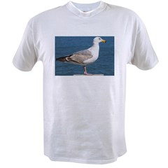 Seagull Photo Value T-shirt