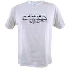 Evolution Definition of Theory Value T-shirt