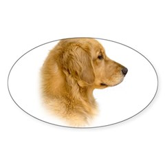 Golden Retriever Portrait Oval Sticker (Oval 50 pk)
