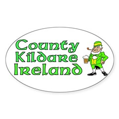County Kildare, Ireland Rectangle Sticker (Oval 50 pk)