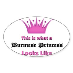 This is what an Burmese Princess Looks Like Sticker (Oval 50 pk)