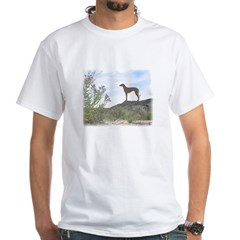 Desert Flower Sloughi White T-Shirt