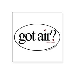 "Got Air? Oval Square Sticker 3"" x 3"""