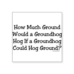 "Groundhog Rectangle Square Sticker 3"" x 3"""