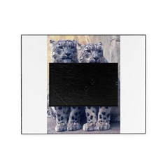 Twin Snow Leopard Cubs Picture Frame
