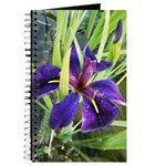 iris journal, book, diary, recipe book