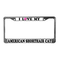 Shorthair Cat License Plate Frames